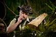 Explorer lost in jungle