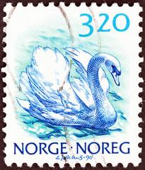 Mute swan (Norway 1988)