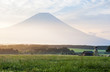 Mt. Fuji - 68878967