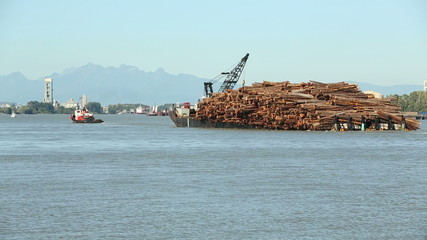 Fraser River Loaded Log Barge