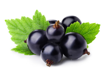 Black currant © maxsol7