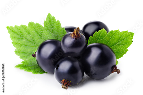 Papiers peints Fruit Black currant