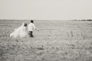 the groom and the bride in the field where the rye grows