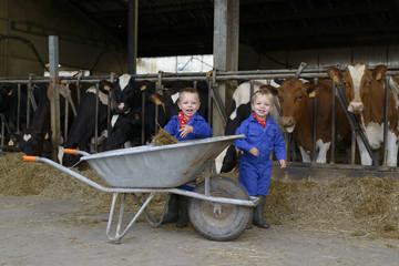 kindere op de boerderij