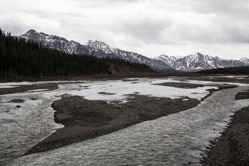 Denali's Teklanika River