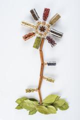 Flor hecha de hierbas y especias aislada sobre fondo blanco