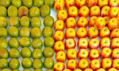 City of Nice - Candy made like fruit