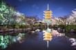 To-ji Pagoda in Kyoto, Japan in the Night