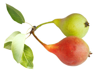 two ripe pear fruits isolated on white