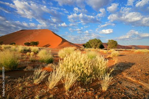 Fotobehang Woestijn Desert landscape with red sand dunes, Sossusvlei