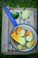 Zucchini flowers in the dipper