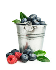 Fresh blueberries in a bucket