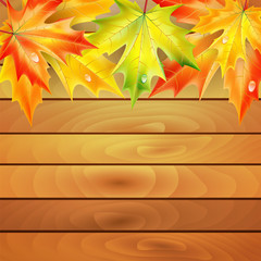 Autumn maple leaves on a background of wooden planks