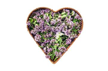 wild marjoram oregano medical flowers in heart form basket