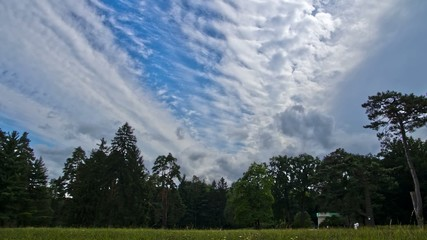 Summer park and clouds timelapse