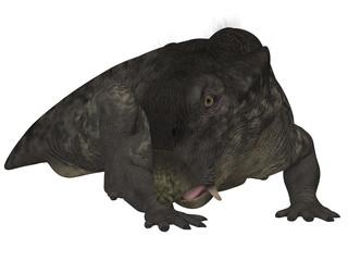 Lystrosaurus- 3D Dinosaur