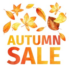 autumn leaves. Autumn sale watercolor. vector