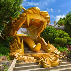 Dragon mount gate