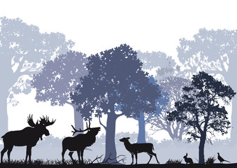 Rotwild mit Elch im Wald