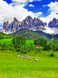 sunny day in countryside, Dolomites, Alps