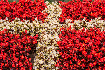 Denmark flag made out of flowers