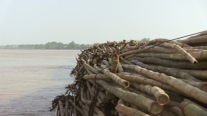 Side of bamboo rafts on the mekong towed by a boat (3)