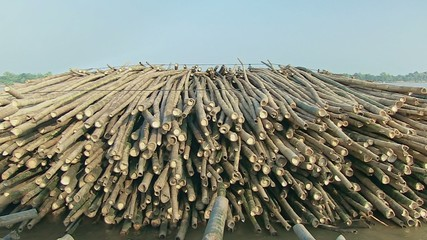 Bamboo rafts. Bamboo cane tied on pile (1)