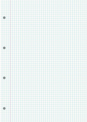 NOTEBOOK GRIDDED SHEET BACKGROUND