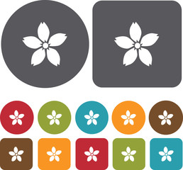 Sakura Japan icons set. Round and Rectangle colorful 12 buttons.
