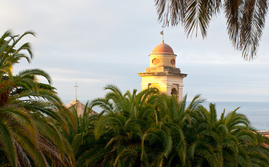 the belfry behind the palms