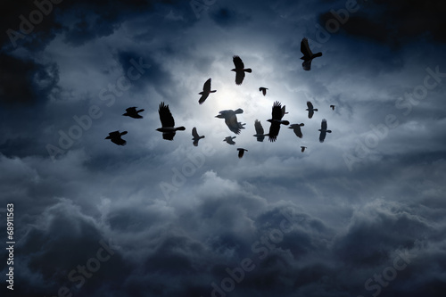 Foto op Canvas Onweer Flying ravens