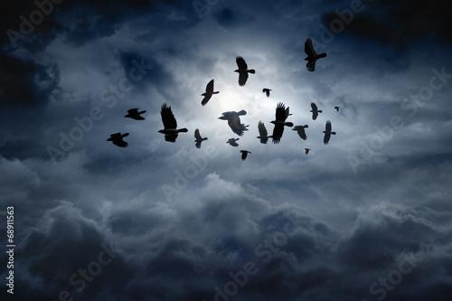 Flying ravens