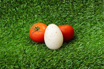 Композиция из помидор и яйца