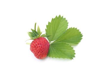 Fresh strawberry with leaf
