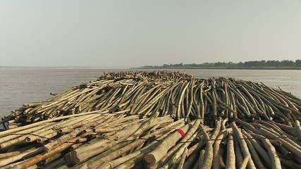 View on the  bamboo rafts on the mekong river (5)