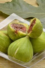 تين شائع Ficus carica Common fig Figowiec pospolity Fichi