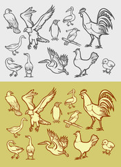 Poultry icons sketch and vintage style