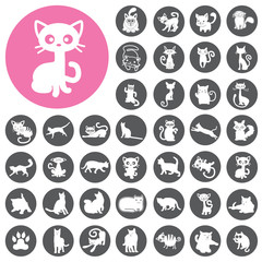 Cats collection icons set. Illustration eps10