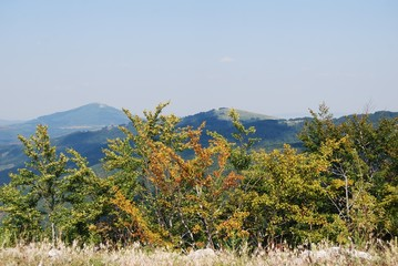 Mountain landscape in the late summer