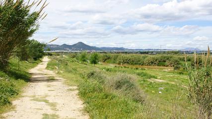 Camino en el Parque Natural del Delta del Llobregat