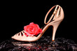 Woman's Shoe and rose
