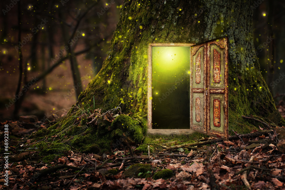 foto auf acrylglas house inside tree nikkel. Black Bedroom Furniture Sets. Home Design Ideas