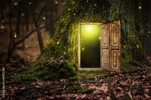 house inside tree - 68922388