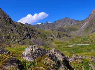 Siberian mountain tundra