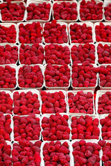 background of ripe red raspberries