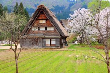 Japan village - Shirakawa-go