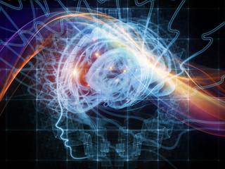 Investigation on the Mind