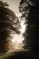 Old house viewed through misty sunlight in forest landscape