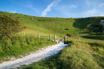 Landscape image of ancient chalk carving in hillside Long Man if