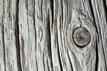 texture legno con nodo